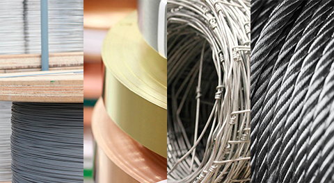 strip-wire-fencing-and-wire